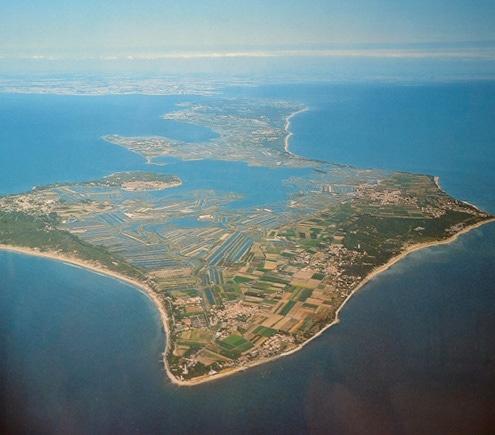 vue aérienne de Saint-Martin de Ré