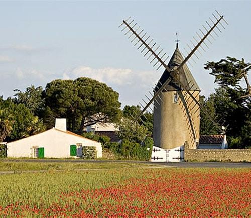 Moulin a l'Île de Ré