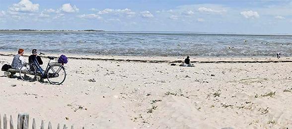 plage de l'ile de ré