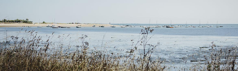 maison de la dune ile de ré
